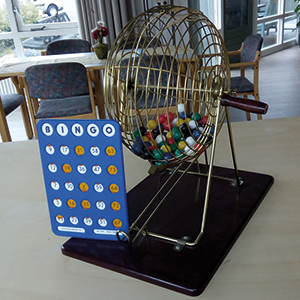 bingo De Veldhoek Harfsen